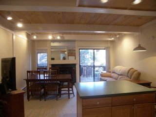 Bright Condo with Internet Access and Television - Incline Village vacation rentals