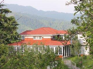 4-bedroom elegant stay cocooned in greenery - Kotgarh vacation rentals