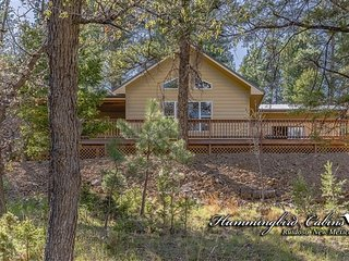 Heavenly Pines 787 - Ruidoso vacation rentals