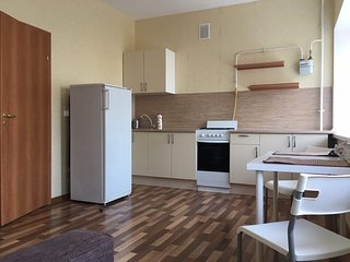 Comfortable apartment near the centre - Pushkinsky District vacation rentals