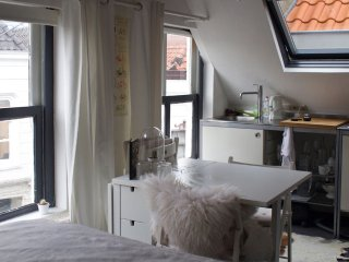 Cozy Studio with Central Heating and Microwave - Den Bosch vacation rentals