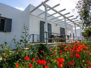 Comfortable 2 bedroom House in Zefiria - Zefiria vacation rentals