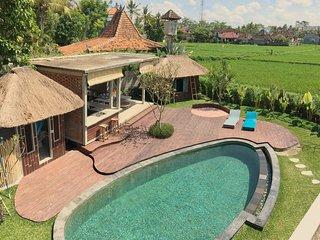 Podpadi Design Spaces A 3 Bedroom Minimalist Oasis Private Villa - Peliatan vacation rentals