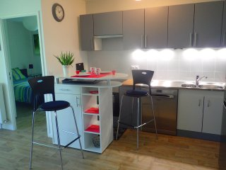 Nice Condo with Internet Access and Television - Dammarie-les-Lys vacation rentals
