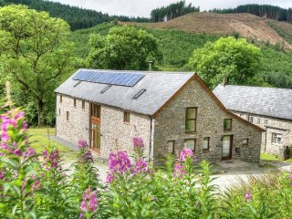 Perfect 5 bedroom House in Llanwrtyd Wells - Llanwrtyd Wells vacation rentals