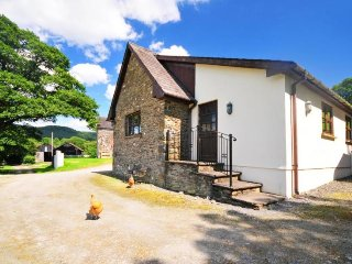 Charming 2 bedroom House in Porthyrhyd - Porthyrhyd vacation rentals