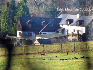 Perfect 1 bedroom House in Crickhowell - Crickhowell vacation rentals