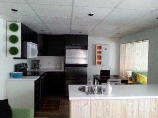 Perfect Saint-David-de-Falardeau Studio rental with Internet Access - Saint-David-de-Falardeau vacation rentals