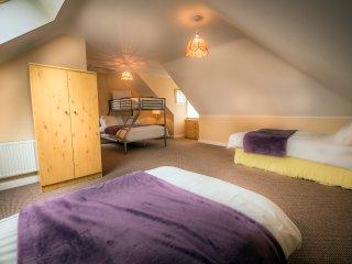 Grangeclare Paddocks B&B - Family Room Ensuite with Shower - Kells vacation rentals