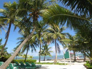 Beach front property, 'suite' w/ balcony, kitchen. Transfers inlcuded- Ssr - San Pedro vacation rentals