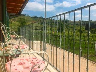 Relax in Valpolicella - Orchidea - Negrar vacation rentals