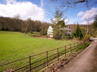 LLH36 Cottage in Satterthwaite - Grizedale vacation rentals