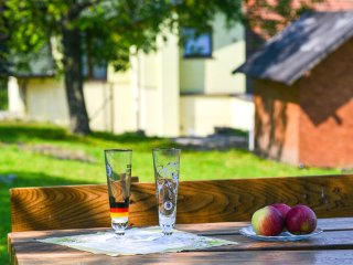 Sweet family home / dom z ogrodem - Cieszyn vacation rentals