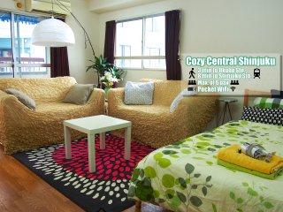 Cozy Central Shinjuku - Shinjuku vacation rentals