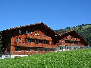 6 bedroom Apartment in Schonried, Bernese Oberland, Switzerland : ref 2297049 - Schönried vacation rentals