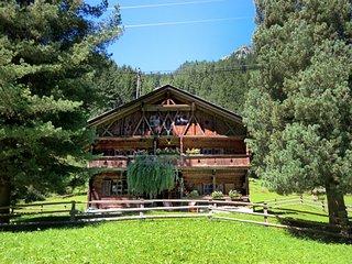 4 bedroom Villa in Ginzling, Zillertal, Austria : ref 2371518 - Ginzling vacation rentals