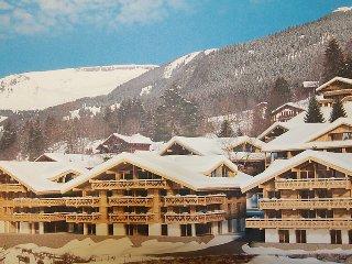 3 bedroom Apartment in Grindelwald, Bernese Oberland, Switzerland : ref 2250115 - Grindelwald vacation rentals