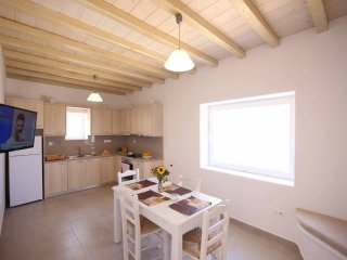 House Artemi with amazing view - Ornos vacation rentals