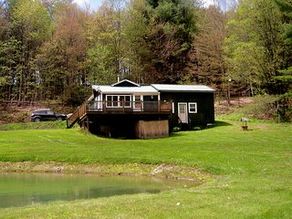 Country Home near Cooperstown, NY and Cooperstown Dreams Park - Hartwick vacation rentals
