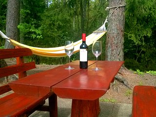 2 bedroom apt. Hill of the Witches in Juodkrante - Juodkrante vacation rentals