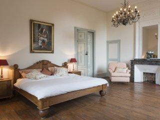 Castle: Château de Labusquière 1 hour from Toulouse - Lombez vacation rentals