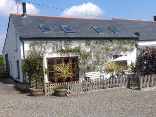 OLDMI Barn in Crackington Have - Maxworthy vacation rentals