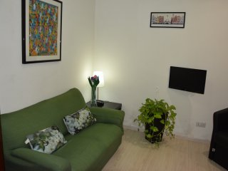 Apartment near the Thermal Spa - Acqui Terme vacation rentals