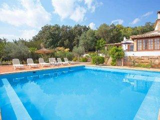 Villa in rural setting for 8 people inside Mallorca. - Sa Pobla vacation rentals