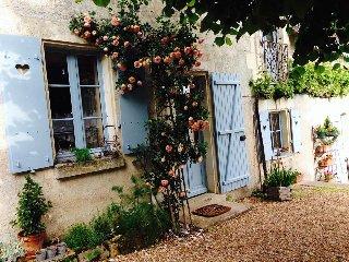 La maison bleue du puy a proximite des chateaux de la loire - Avon-les-Roches vacation rentals