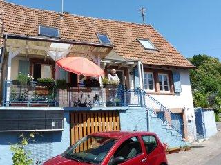 Pfalzhaus im Trifelsland mit Sonne im Wein - Silz vacation rentals