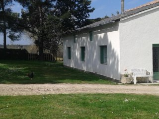 1 bedroom Gite with Parking in Caudecoste - Caudecoste vacation rentals