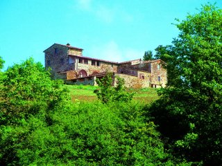 Farmhouse Rental in Tuscany, Castellina in Chianti (Chianti Area) - Villa - Castellina In Chianti vacation rentals