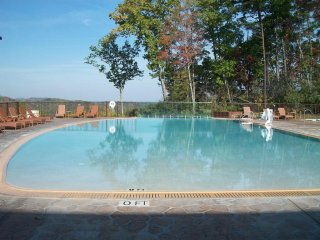 Jul 1-8, 2017 in the Smokies, Free Water Park Tickets & Wi-Fi, Gatlinburg is ok - Gatlinburg vacation rentals