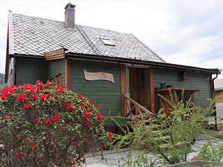 Wooden house by the fjords - Acu Rem Tetigisti - Bergen vacation rentals