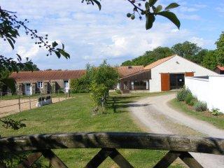 Grand Gîte familial bord de mer - Saint-Vincent-sur-Jard vacation rentals