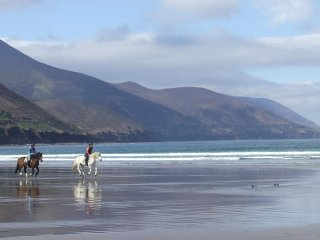 Ring of Kerry/ Wild Atlantic. Castle View House - 6 BR-sleeps 12- Wifi- Sea View - Glenbeigh vacation rentals