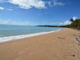 BEACH VILLA 233 - Humacao vacation rentals
