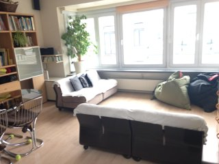 Sunny apartment 80m2 in Belle Epoque Quarter - Ostende vacation rentals