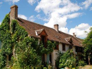 La Sérénité au cœur du Gâtinais - Chateau-Renard vacation rentals