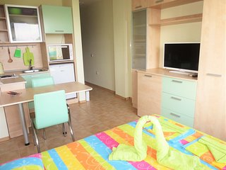 Sunny Studio for 2 in Fantasy Apartments - Saints Constantine and Helena vacation rentals