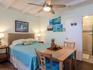 Dolphin Studio - Kailua vacation rentals