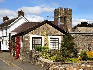 Perfect 3 bedroom Cottage in Llandovery - Llandovery vacation rentals