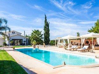 New listing! Villa Vravrona Tower - Kalyvia Thorikou vacation rentals