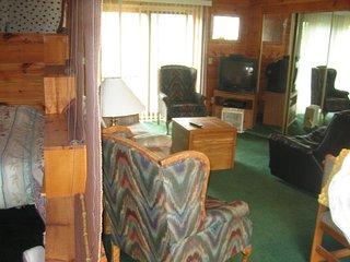 Nice 3 bedroom Cottage in Brainerd - Brainerd vacation rentals