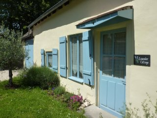 Pet friendly.  Child friendly.  Enclosed rear garden.  English satellite. - Chateauroux vacation rentals