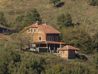 Nice 5 bedroom House in Simitli - Simitli vacation rentals