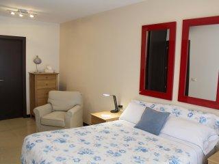 Adorable 1 bedroom Condo in La Laguna - La Laguna vacation rentals