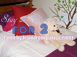 Beds for 2 in shared room - 15mn away from Paris - Deuil-la-Barre vacation rentals