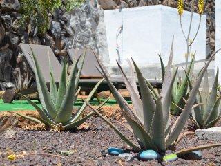 Villa Aloe - Oceanview Sunny Family Home - Hermigua vacation rentals