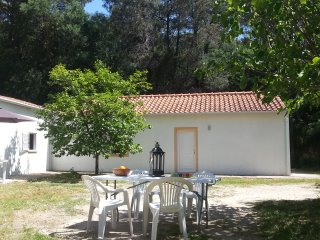 House in Vale de Prazeres, at Rogerio's place - Castelo Novo vacation rentals